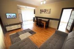 living apartament Vila Moldavia Class1