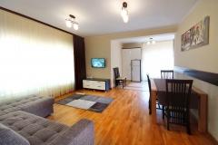 living apartament Vila Moldavia Class2